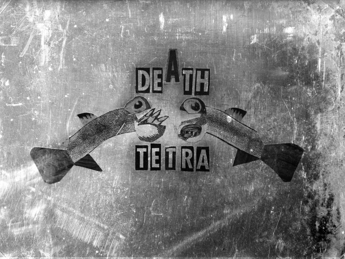 death tetra grunge